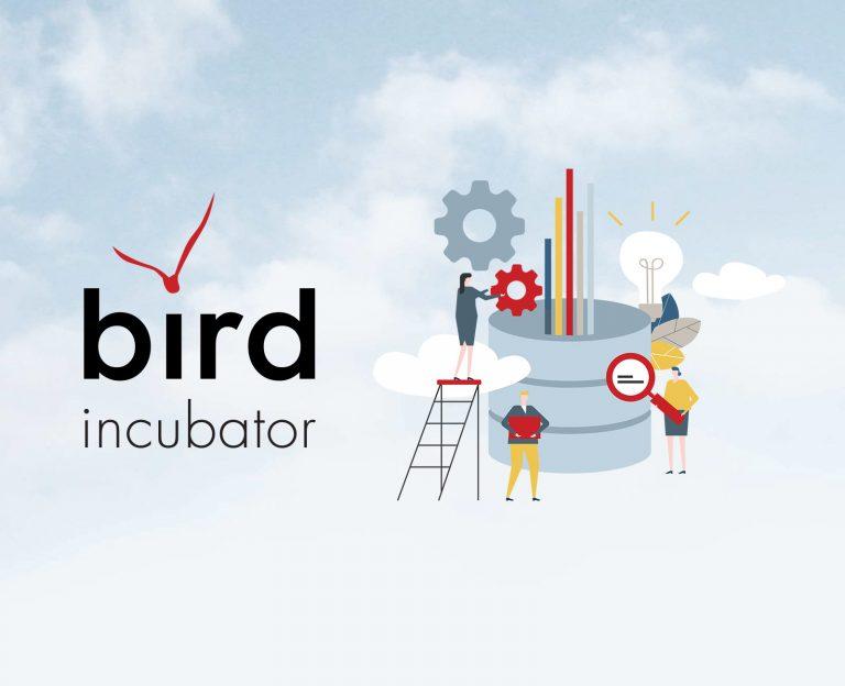 BIRD Incubator